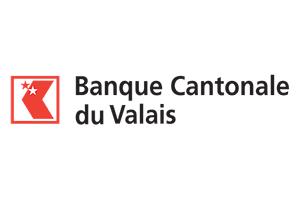 bcvs logo sponsors